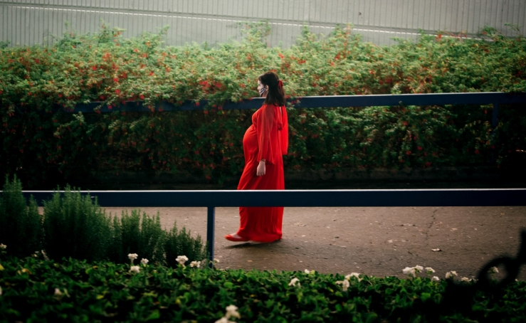 1prevenge_alicelowe_reddress